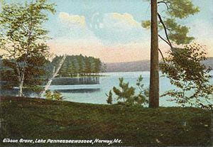 Norway, Maine - Lake Pennesseewassee in 1906