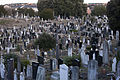 Glasnevin Cemetery - Established In 1832 (4164599122).jpg