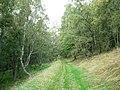 Glen Tilt Right of Way - geograph.org.uk - 267754.jpg