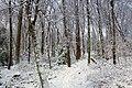 Golden Eagle Trail (Full Hike) (6) (11142259426).jpg