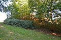 Grabhügel in den Hademarscher Bergen NIK 4222.JPG