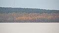 Grand Beach, Lake Winnipeg, Manitoba (481777) (9445343345).jpg