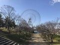 Grand ferris wheel of Tempozan Harbor Village from Tempozan Park.jpg