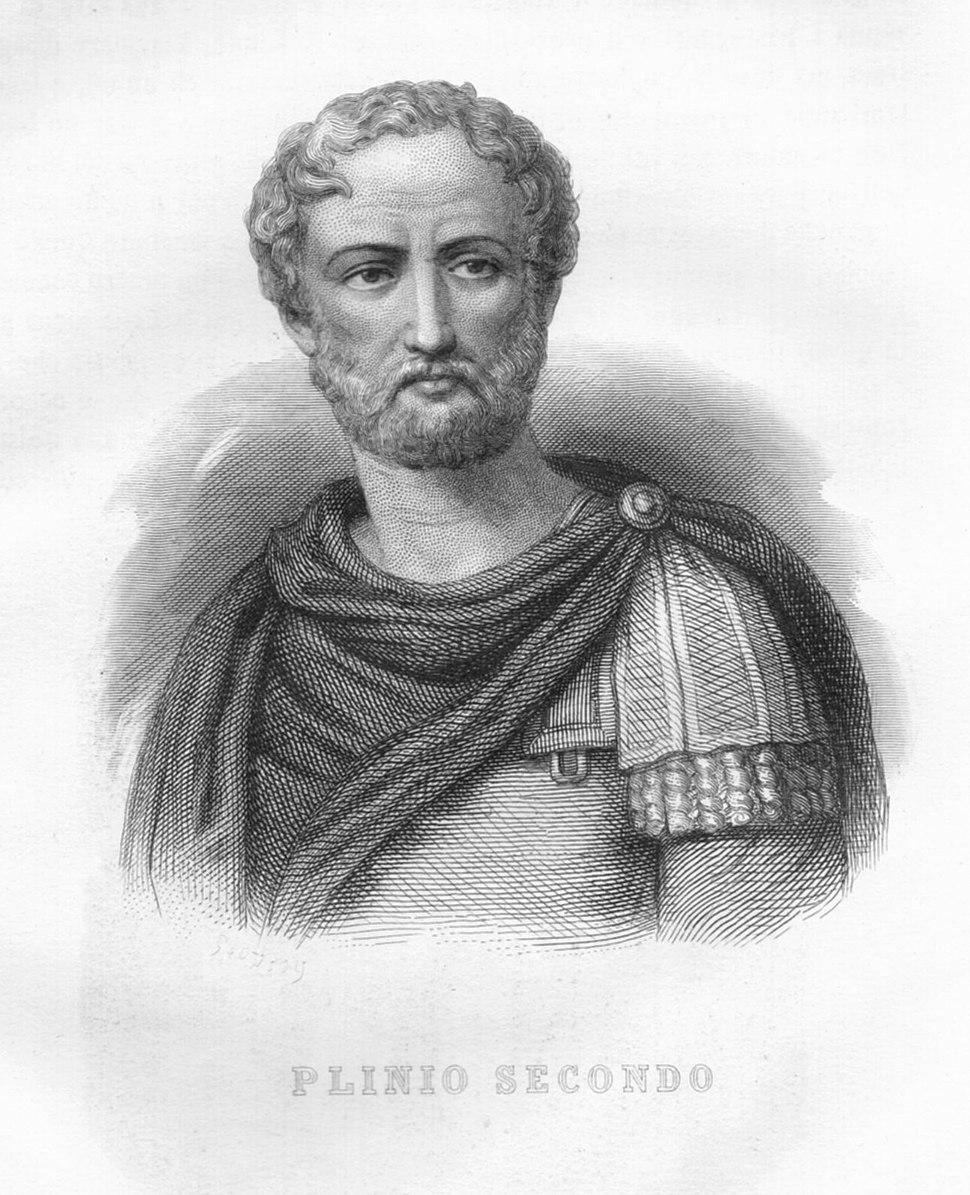 Grande Illustrazione del Lombardo Veneto Vol 3 Plinio Secondo 300dpi