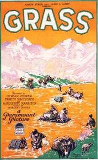 <i>Grass</i> (1925 film) 1925 film