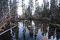 Grassi Lakes road trip Canmore Alberta Canada (10277641564).jpg