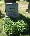 Grave Kautsky Benedikt.jpg