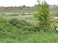 Gravelines le Parc du Polder (12).JPG