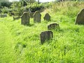 Gravestones in the churchyard at Clee St Margaret - geograph.org.uk - 1443434.jpg