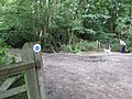 Greensand Way, Near Reigate Heath Surrey - geograph.org.uk - 1423485.jpg