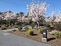 Gresham, Oregon (2021) - 071.jpg