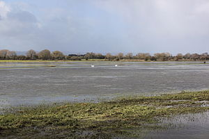 Winter flooding of 2013–14 on the Somerset Levels - Greylake next to King's Sedgemoor Drain showing extensive flooding on 26 February 2014
