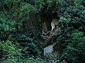 Grotte de Courossé (49).jpg