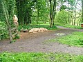 Guisborough Walkway - geograph.org.uk - 12452.jpg