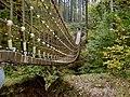 Hängebrücke (Erlebnispfad Binger Wald) - panoramio.jpg