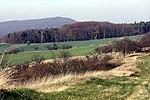 Höhenzug Schmücke, auf dem Kammweg-1.jpg