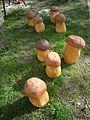 Hříbky Špiclíky.jpg