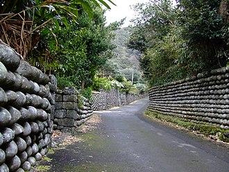 Izu Islands - Image: Hachijojima tamaishigaki 2007 03 20