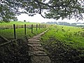 Hadrian's Wall National Trail near Coombe Crag - geograph.org.uk - 987747.jpg