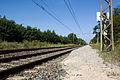 Halte Fontainebleau - Forêt IMG 8523.jpg