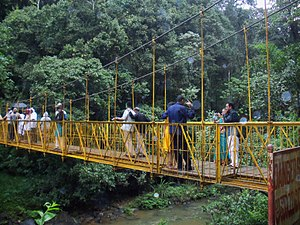 Abbey Falls - Hanging bridge near the falls