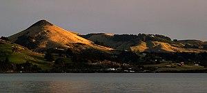 Otago Peninsula - Harbour Cone