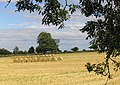 Harvest bales at Maidens Hall - geograph.org.uk - 547465.jpg