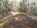 Hennington-Flowers Cemetery (2121638024).jpg