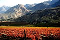 Hex River Valley - Western Cape, South Africa (3880658723).jpg