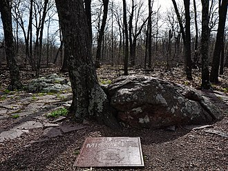 Taum Sauk Mountain - Image: Highest natural point in Missouri