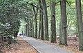 Hoge Veluwe National Park bei Otterlo - panoramio.jpg