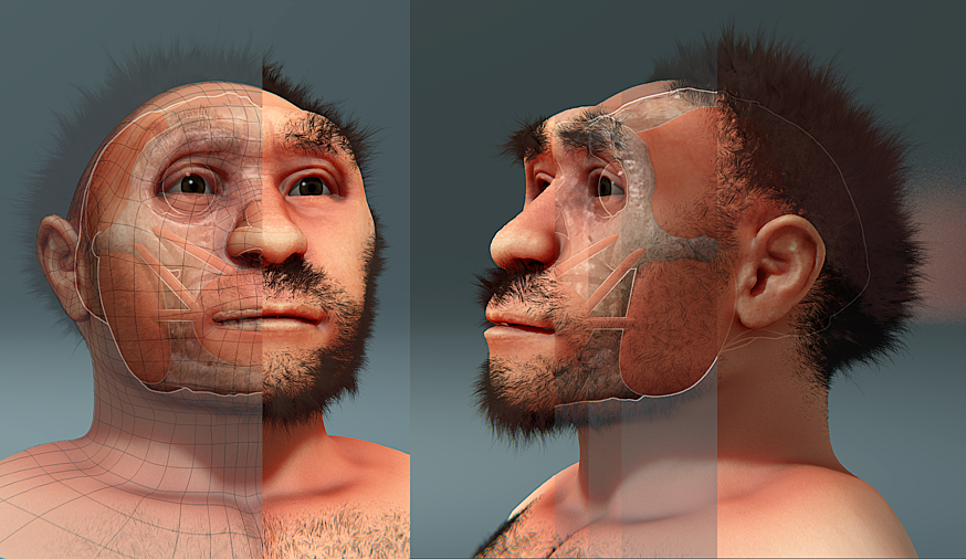 Homo erectus pekinensis, forensic facial reconstruction