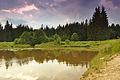 Horní rybník u obce Suchý, Velenov, okres Blansko (04).jpg
