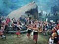 Hornbill Festival Nagaland 01.jpg