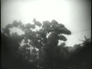 File:Hurricane Connie 1955.ogv