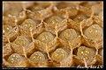 Hymenoptera (6022583862).jpg