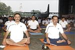 INS Garuda celebrates International Yoga Day 2017 (9).jpg