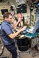 ISS Expedition 45 Scott Kelly undergoes ultrasound measurements.jpg