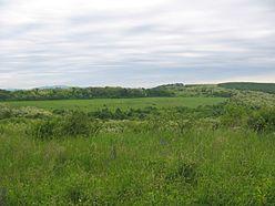 Ibafa, paisagem, hungria, 2006.jpg