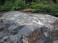 Impact pseudotachylite (Sudbury Breccia, Paleoproterozoic, 1.85 Ga; Windy Lake Northwest roadcut, Sudbury Impact Structure, Ontario, Canada) 2 (33881824298).jpg
