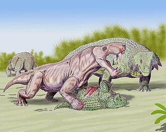 Scutosaurus - Scutosaurus being attacked by Inostrancevia
