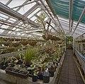 Interieur, overzicht plantenkas - Delft - 20404921 - RCE.jpg