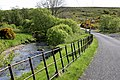 Iron Fence - geograph.org.uk - 434250.jpg