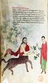 Italia meridionale, miscellanea medica, 1250 ca., pluteo 73.16, 02 chirone cropped white-balanced.png