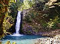 Izu Joren-Wasserfall 11.jpg