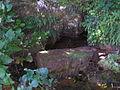 Izvor Pećina u Gričima.JPG