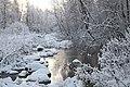 Jägala jõgi Kiigumõisa maastikukaitsealal II.jpg
