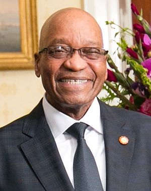 South African general election, 2014 - Image: Jacob Zuma 2014 (cropped)