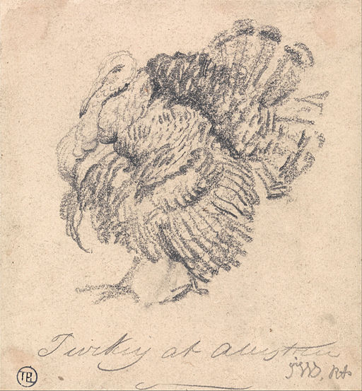 James Ward - Study of a Turkey - Google Art Project