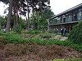 Japanisch-Deutsches Zentrum Berlin Garten.jpg